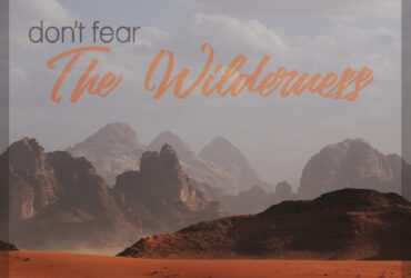 Don't Fear The Wilderness